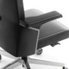 Fotele CEO -detal