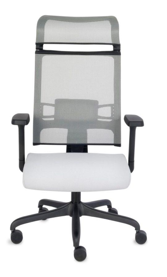 Fotel Ergofix Grospol