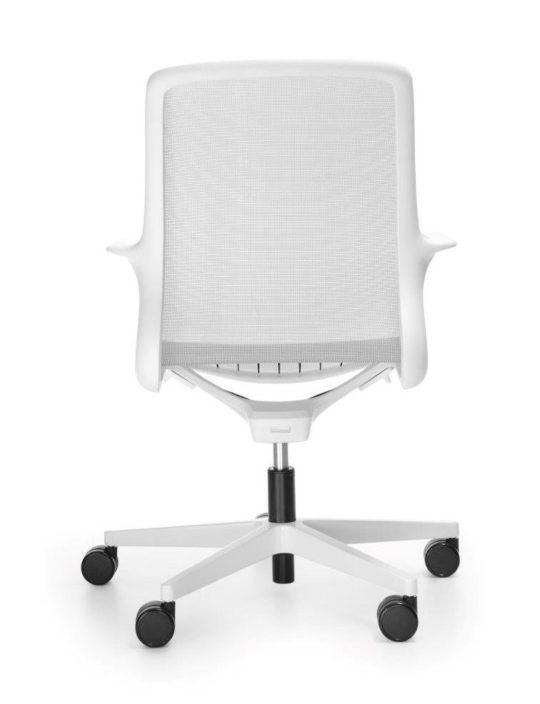 OVIDIO-OV-1M2-white